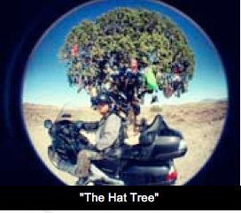 """The Hat Tree"""